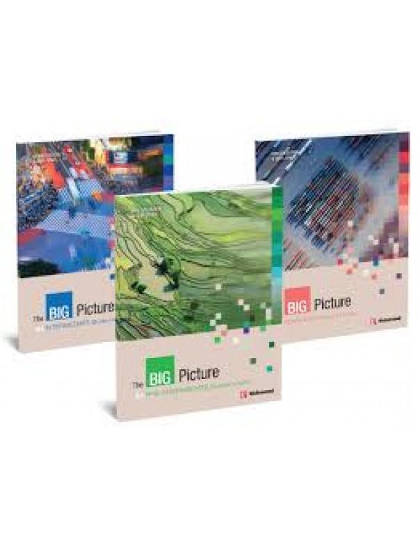 The Big Picture Advanced Digital Book